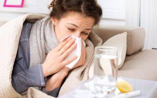 Какая прививка против гриппа лучше — импортная или отечественная
