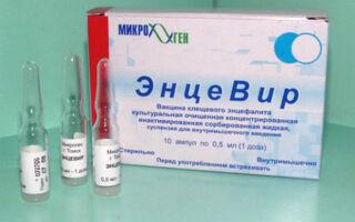 Вакцина «ЭнцеВир»