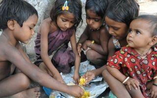 Прививки перед поездкой в индию