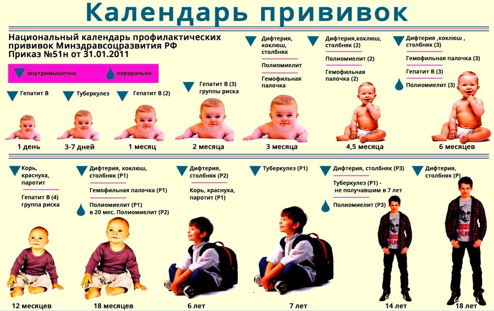 Что за прививки делают в 3 месяца ребенку thumbnail