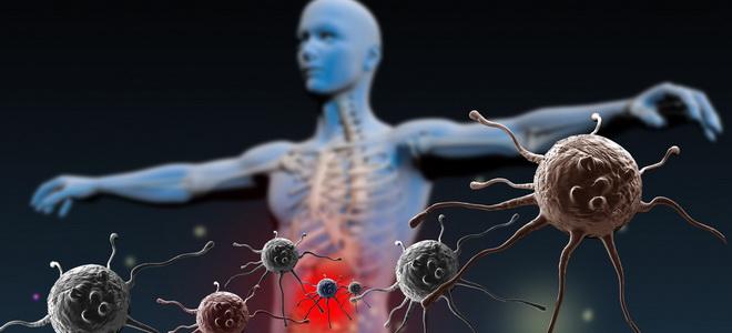 Длительность иммунитета на живые вакцины
